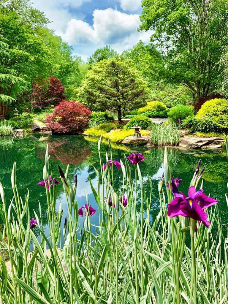 gibbs gardens japanese gardens near atlanta georgia a short drive