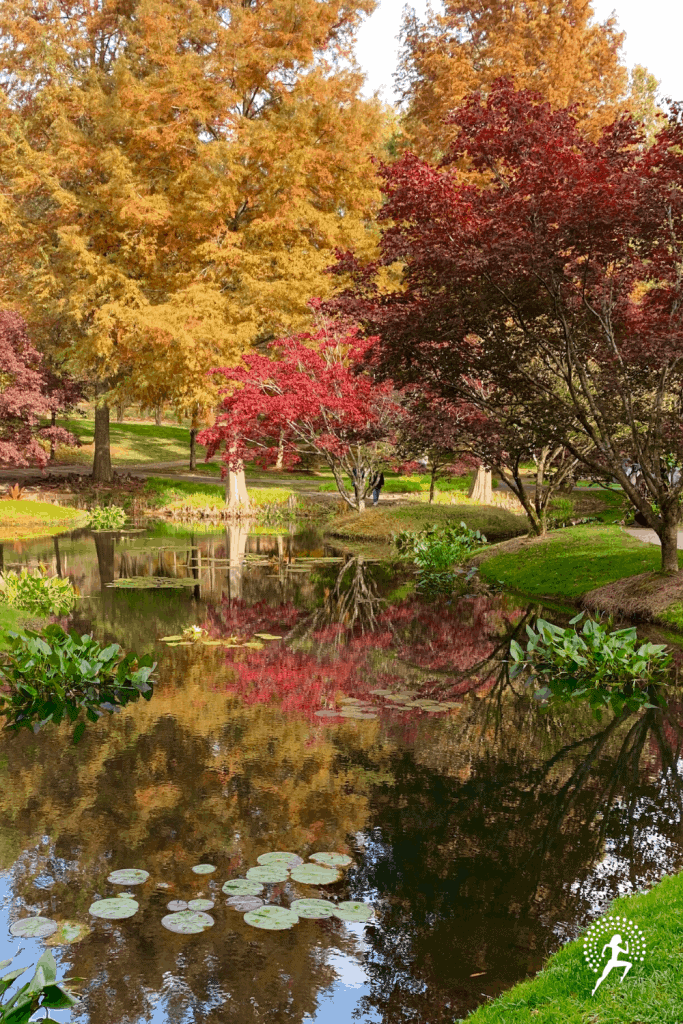 Visit Gibbs Gardens!  Enjoy an amazing Japanese garden, water lily garden, & daffodil garden - the largest in U.S.! Located just a short drive outside of Atlanta, Georgia.  Membership is a great deal, allowing you to visit multiple times to see all its beauty.  #runningglow #gibbsgardens #daytrip